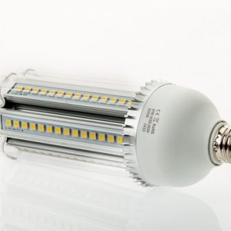 20 Watt cool white LED corn bulb with frosted cover